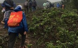 Hàng trăm người băng rừng tìm cụ ông 71 tuổi bị mất tích