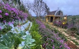 'Đầu tư nhà vườn ngoại thành không khác gì 'chơi' xe sang của nhà giàu'