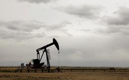 Giá dầu tăng 5 tuần liên tiếp