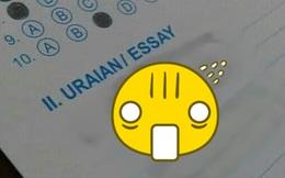 Bất lực với bài thi tiếng Anh, nam sinh vẽ vội vài nét nhìn 'vừa tức vừa cười': 0 điểm, về chỗ học lại!
