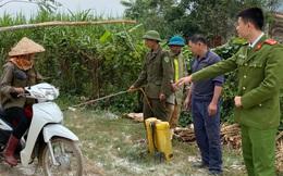 Kẻ lạ vứt hơn nửa tấn gà chết rải rác dọc bờ biển ở Nghệ An