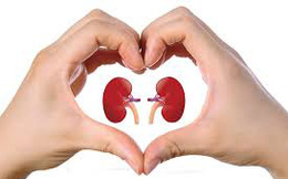 7 bước đơn giản bảo vệ tim và thận