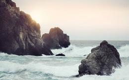 Nhìn lại một năm đã qua với triết lý Fudoshin giúp người Nhật 'tâm bất biến giữa dòng đời vạn biến': Dục tốc bất đạt, có nhẫn nại mới thấy được an yên