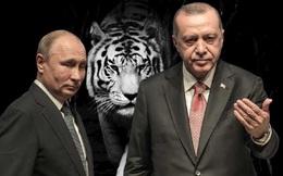 """Nga-Thổ """"vỗ ngực"""" chiến thắng, ai bị coi là """"hổ không nanh""""?"""