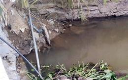 Nước mương thành... nước tinh khiết: Lỗ hổng lớn trong quản lý, giám sát