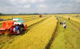 Quốc hội quyết định miễn thuế đất nông nghiệp tới năm 2025, nông dân tiết kiệm hàng nghìn tỷ