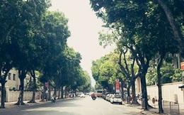 Thời tiết hôm nay: Chỉ số UV ở Hà Nội, Đà Nẵng có nguy cơ gây hại cao
