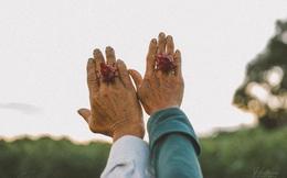 """""""Đôi bàn tay bố mẹ"""" - những thước ảnh của chàng trai Quảng Trị khiến nhiều người xúc động"""