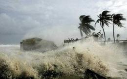 Chỉ đạo ứng phó áp thấp nhiệt đới, mưa lớn diện rộng