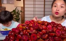 Quỳnh Trần JP tiết lộ món mận đặc sản của miền Bắc cũng được bán ở Nhật Bản nhưng khi biết mức giá thật sự ai cũng giật mình