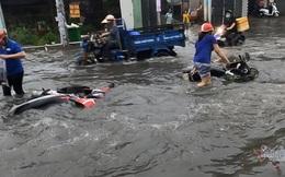 Mưa lớn do ảnh hưởng của bão số 1, cây đổ đè chết người đi đường ở TP.HCM