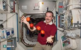 Cuộc sống khác thường của các phi hành gia trên trạm vũ trụ ISS