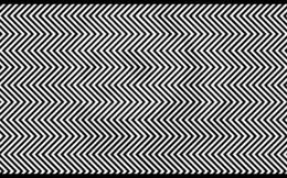 Bạn hẳn là thiên tài mới nhìn thấy hình ảnh ẩn dưới những đường nét này!