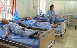 19 người ở Sơn La bị ngộ độc vì ăn bọ xít