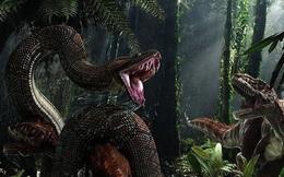 Tung tích của siêu trăn nuốt chửng cả khủng long bạo chúa