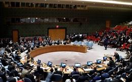 4 nước trúng cử Ủy viên không thường trực HĐBA nhiệm kỳ 2021-2022