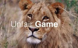 Số phận bi thảm của sư tử nuôi nhốt ở Nam Phi: 12.000 cá thể chờ chết phục vụ săn bắn mua vui và lấy xương cốt