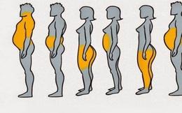 Nếu thấy mình có vẻ béo, hãy xem hình dưới đây để biết thừa mỡ ở chỗ nào trên cơ thể và cách xử lý chúng nhanh nhất có thể