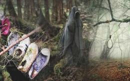 Khu rừng tự sát Aokigahara: Nơi tăm tối và im lặng tuyệt đối với những câu chuyện rùng rợn đầy ám ảnh