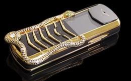Người đàn ông trình báo bị cướp túi xách đựng điện thoại Vertu 880 triệu, kính mắt 380 triệu