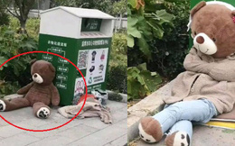 Bị bỏ rơi vạ vật ở thùng rác, gấu bông cô đơn bỗng trở nên sang chảnh hơn hẳn nhờ lòng tốt của người đi đường!