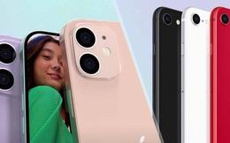 iPhone 12 sẽ có phiên bản rất nhỏ gọn, thậm chí lép vế hơn cả iPhone SE 2020