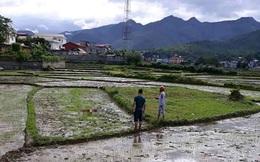 Nóng: Nghi thảm án ở Điện Biên, 3 người tử vong
