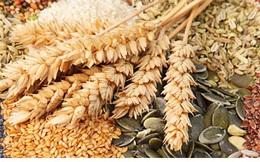 Thực phẩm giàu protein giúp giảm cân hiệu quả