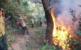Người phụ nữ độc thân tử vong sau khi dập đám cháy bãi cỏ gần nhà