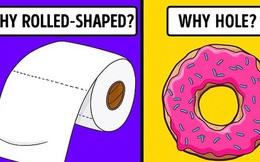 Giải mã bí ẩn: Lý do tại sao bánh donut lại có hình tròn thủng lỗ và hình dáng mọi thứ quanh bạn từ đâu mà ra