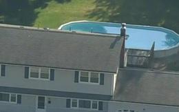 Ba người một nhà tử vong khó hiểu trong hồ bơi gia đình