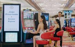 Casino Việt thu được bao nhiêu trong thời dịch COVID-19?