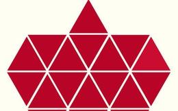 Người rất tinh mắt mới nhìn ra hình tam giác khác màu, bạn có nhìn thấy không?