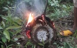Hai em nhỏ bị ong đốt thương vong