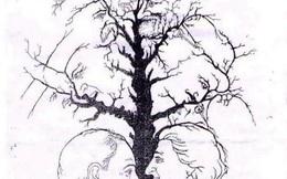 Người tinh mắt, giàu trí tưởng tượng mới nhìn hết số khuôn mặt trong bức tranh này!