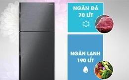 4 mẫu tủ lạnh Inverter siêu tiết kiệm điện lại cực bền trong khoảng giá 8 triệu đáng mua cho các gia đình