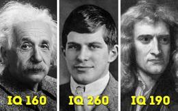 Số phận hẩm hiu của người có chỉ số IQ cao hơn cả Einstein