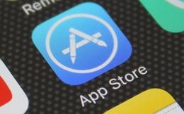 Kho ứng dụng - 'Gót chân Asin' của hai ông lớn công nghệ Apple và Google