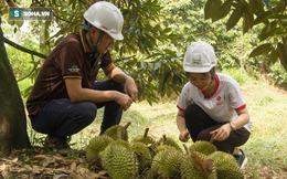 Cách làm sầu riêng không giống ai của ông chủ vựa sầu riêng chín tự nhiên đắt nhất nhì Việt Nam