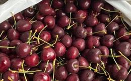 Cherry Mỹ không còn rẻ, chị em rủ nhau mua chung