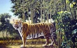 Thách thức đôi mắt và trí thông minh: Đố bạn tìm ra con hổ nữa ẩn trong tranh!