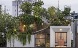 Công viên trên mái nhà tại Tp Hồ Chí Minh trên báo ngoại