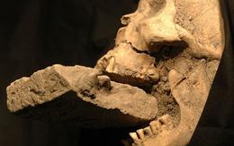Phát hiện thi thể em bé 1.500 tuổi bị nghi chôn theo hình thức của ma cà rồng