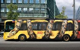 11 quảng cáo xe bus cực thông minh và ấn tượng, nhìn một lần là nhớ mãi