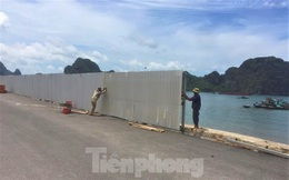 Bãi tắm nhân tạo ở Hạ Long chưa hoạt động đã có 5 người thiệt mạng