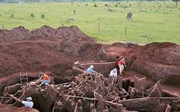 Đổ 10 tấn xi măng xuống tổ kiến, các nhà khoa học không thể tin vào mắt mình khi khám phá ra 'thành phố khổng lồ' dưới lòng đất