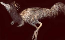 Sinh vật lạ từ Suối Địa Ngục: Đầu khủng long, mình đà điểu