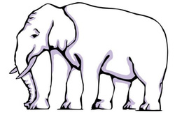 Thách thức thị giác: Tìm khuôn mặt cô gái; con voi này có bao nhiêu chân?