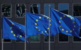 """Hội nghị thượng đỉnh EU: """"Lửa thử vàng, gian nan thử sức"""""""