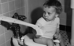 Góc suy ngẫm: Trước khi giấy vệ sinh ra đời, nhân loại đã phải dùng gì sau khi 'giải quyết'?